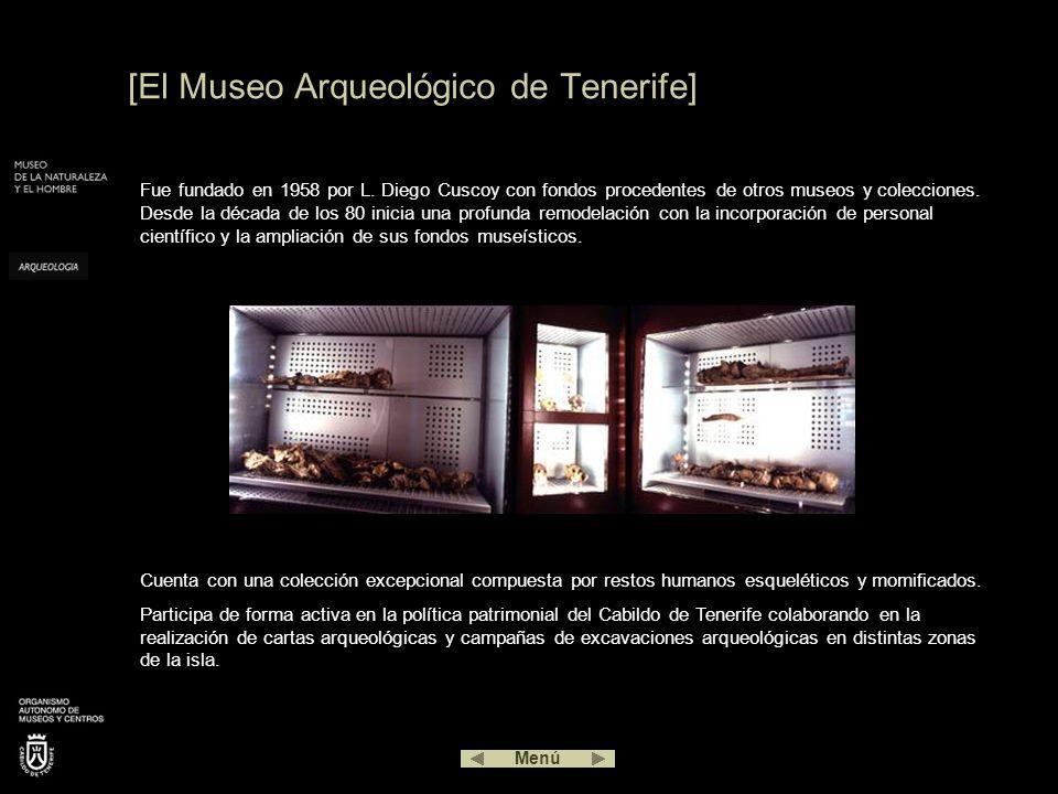 [El Museo Arqueológico de Tenerife]